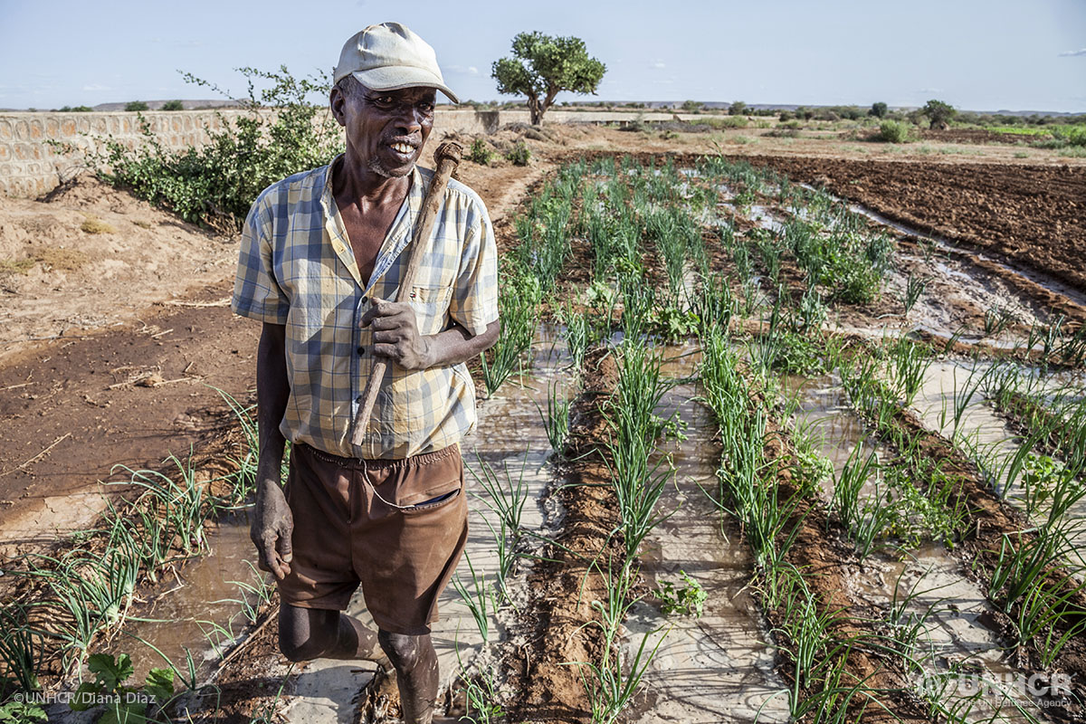 Selat Mahamud Farah, a 64-year-old farmer, irrigates his onions on land near Melkadida camp – home to over 30,000 Somali refugees.