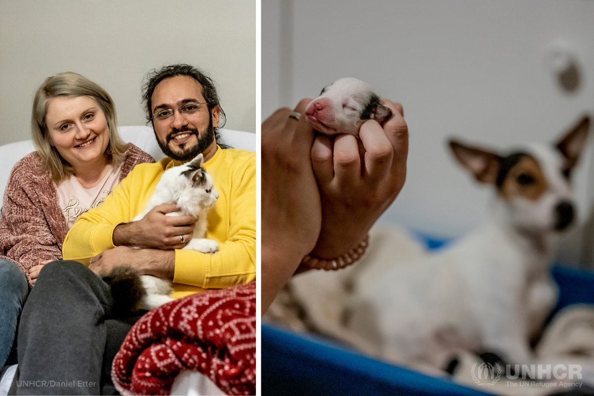 Syrian refugee Mawaheb, his wife Ida, and their cat, dog and puppies